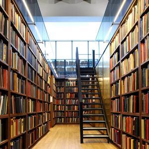Библиотеки Болхова